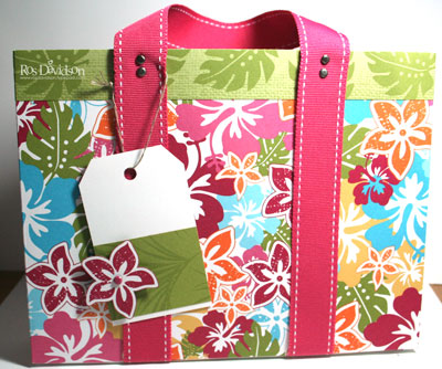 Bag---summer-mini-dsp