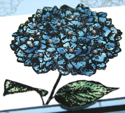 Polished-stone-close-up-1