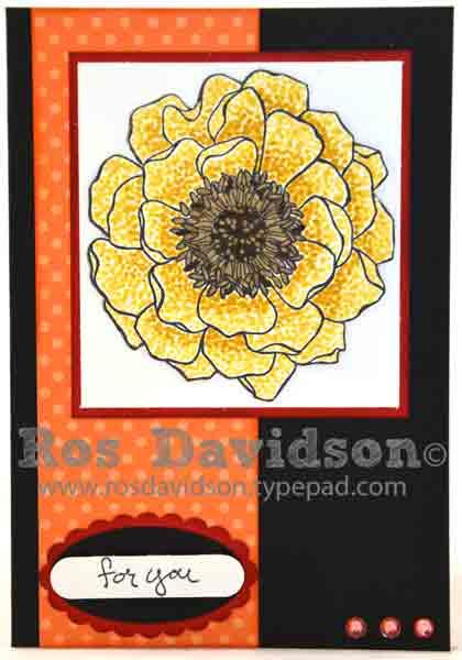 Blendabilities---blended-bloom-3