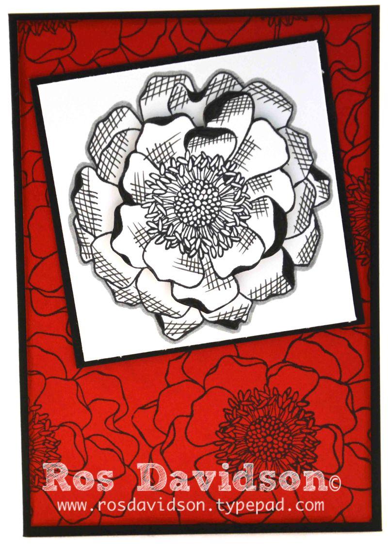 Blendabilities---blended-bloom-2