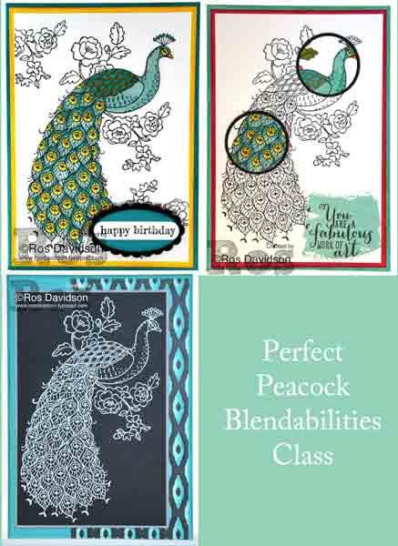Blendabilties---perfect-peacock-all