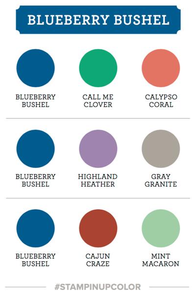 Blueberry-bushel