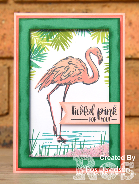 Stampin up, colour creations, blog hop, color coach, colour coach, call me clover, fabulous flamingo, flirty flamingo, petal pink, powder pink, shaker card, cocngraulations