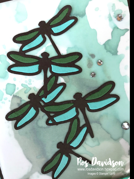 Stampin up, colour creations, blog hop, color coach, colour coach, early espresso, dragonfly dreams, better together, you've got style, big shot, detailed dragonfly thinlets, petals and more thinlits, baby wipe technique, inlaid embossing