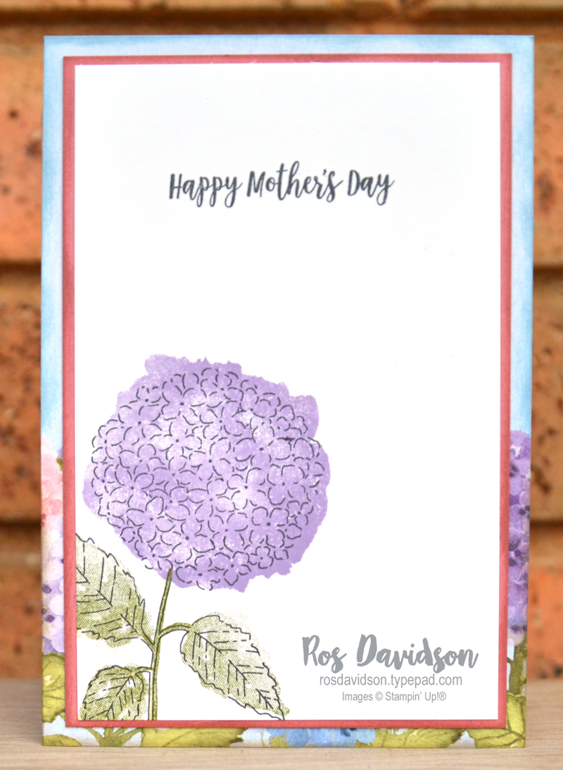 Hydrangea Haven Stampin' Up!