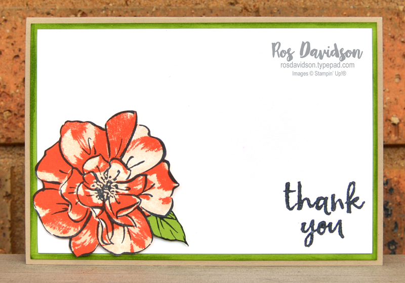 Stampin' Up, Colour Creations, Color Creations, Blog Hop, crumb cake, to a wild rose stamp set, wild rose dies, sewing patterns, faux silk technique, fussy cutting, massive thanks stamp set