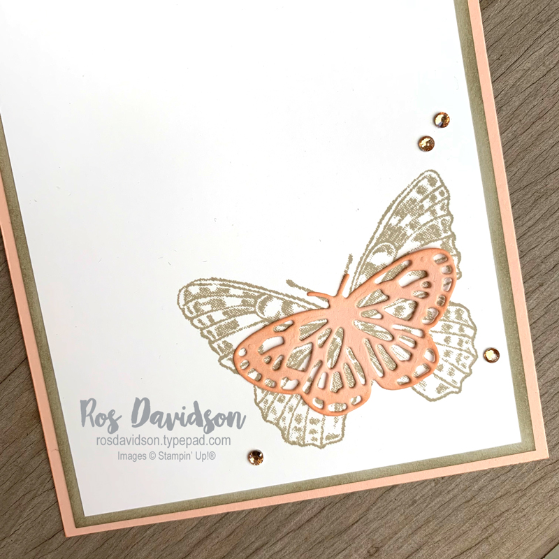 Butterfly brilliance Stampin Up