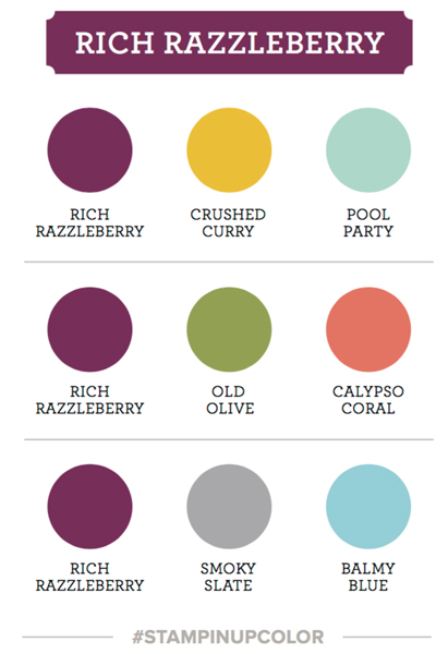 Rich razzleberry colour coach swatch Stampin Up