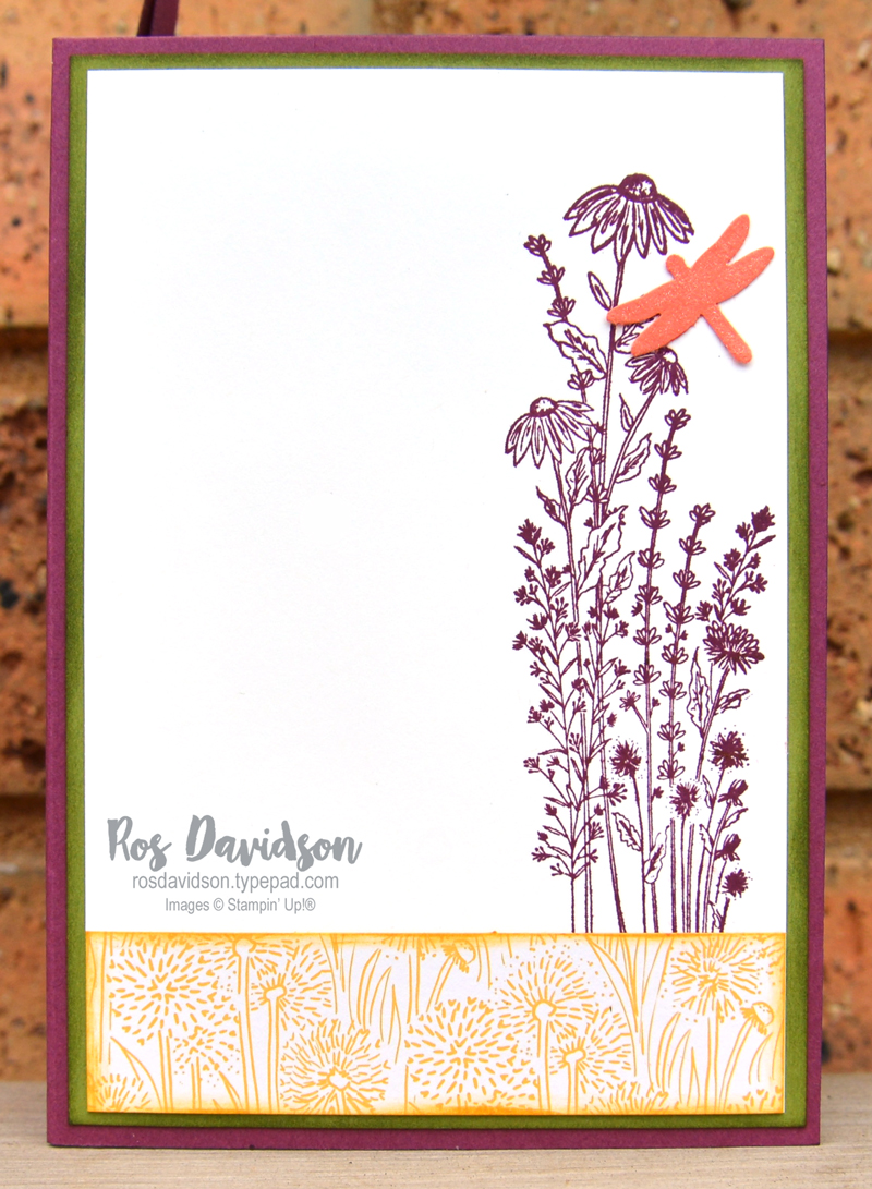 Dragonfly garden Stampin Up